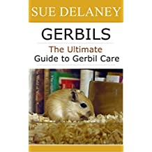 Gerbils: The Ultimate Guide to Gerbil Care