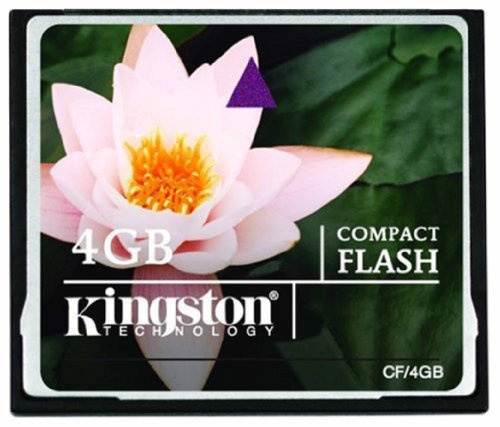 - Kingston 4 GB CompactFlash Memory Card CF/4GB