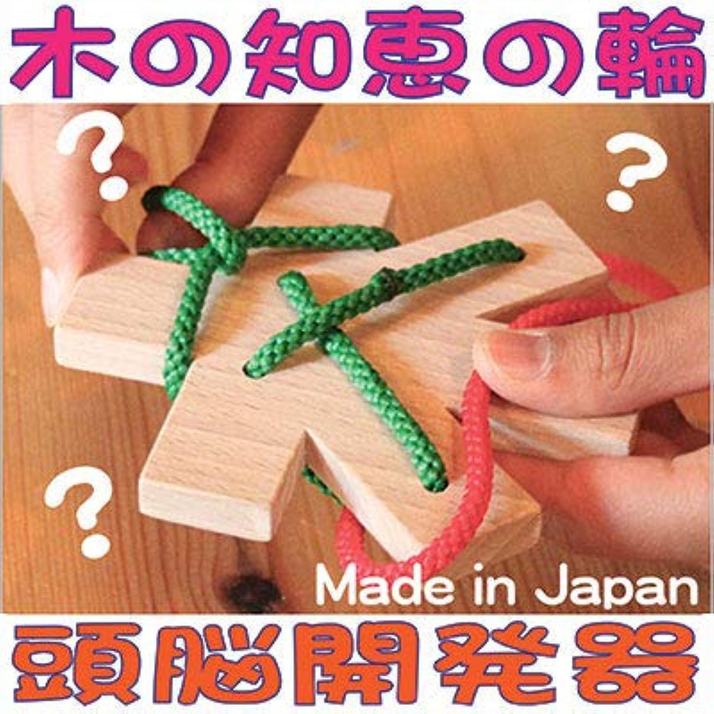 レビューエイズ羨望tsumiki(積み木)木の玩具 gg kiko