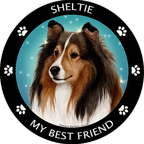 Shetl (Dog Sheep Costumes)
