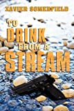 To Drink from a Stream, Xavier Somerfield, 1456744925