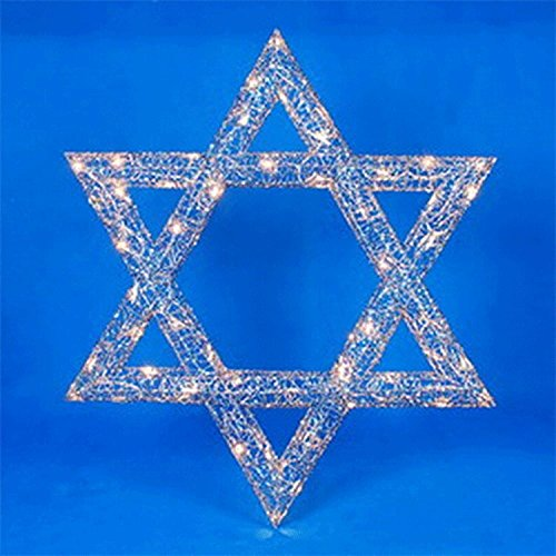 Outdoor Lighted Star Of David - 1