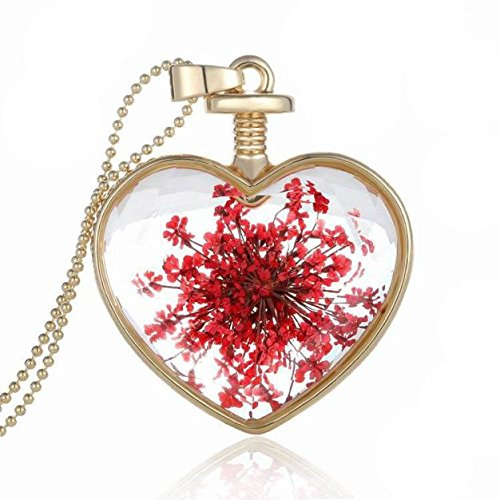 Necklace Heart Glass Red (FimKaul Necklace,Women Dry Flower Heart Glass Wishing Bottle Pendant Necklace (Red))