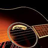 L.R. Baggs ANTHEM-SL  Acoustic Guitar Pickup