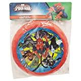 (Pack of 12) Frisbee Flying Disc Party Flavor Party Game Licensed, 9'' Disc Assorted