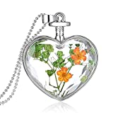 Best Usstore Friends Girl Necklaces - Usstore 1PC Women Dry Flower Heart Glass Wishing Review
