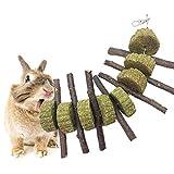 Pet Snacks Chew Toys, AUOKER Thin Apple Sticks for Bunny, Rabbits, Chinchilla, Guinea