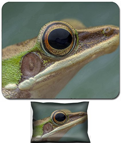 - Luxlady Mouse Wrist Rest and Small Mousepad Set, 2pc Wrist Support design White lipped frog Hylarana labialis at the night IMAGE: 27569868