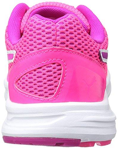 Descendant Femme Rose Chaussures Running Knockout Magenta de Puma puma White 06 ultra V4 Pink wXqax6