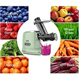 Juicer Machines, Orfeld Cold Press Juicer with