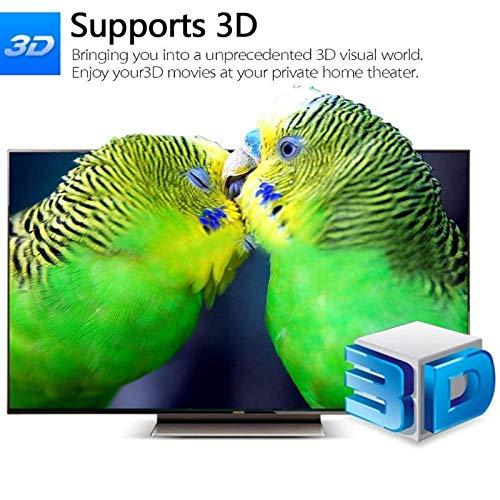 Cailiaoxindong DVB-T/T2 TV Receiver 3D Digital Video Terrestrial MPEG4 PVR HD 1080P 3D Set-top Box TV Box EU Power Cable