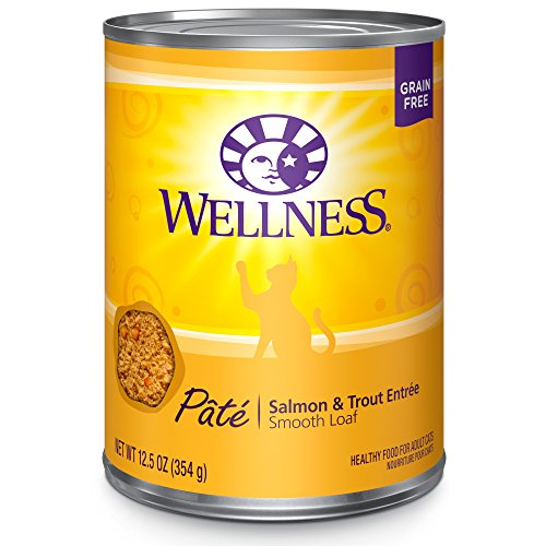 Wellness Natural Grain Free Wet Canned Cat Food, Salmon & Trout Pate, 12.5-Ounce Can (Pack of 12) by Wellness Natural Pet Food
