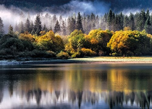 1art1 Posters: Forests XXL Poster - Autumn Lights (54 x 38 inches) from 1art1