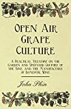 img - for Open Air Grape Culture - A Practical Treatise on the Garden and Vineyard Culture of the Vine, and the Manufacture of Domestic Wine book / textbook / text book