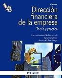 img - for Direccion financiera de la empresa/ Company's Financial Direction: Teoria y practica/ Theory and Practice (Economia y empresa/ Economics and Business) (Spanish Edition) book / textbook / text book