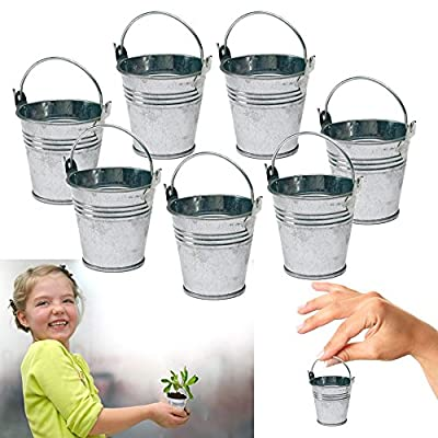 Dazzling Toys 24 Mini Metal Buckets Tin Party Pail Containers Wedding Souvenir: Toys & Games