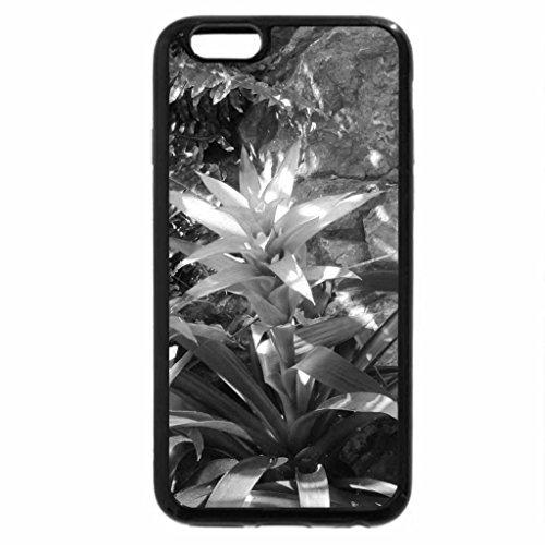 iPhone 6S Plus Case, iPhone 6 Plus Case (Black & White) - Exotic flowers at the pyramids 97
