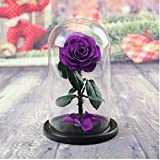 Preserved Fresh Flower, Live Forever Rose, Enchanted Rose,Natural Eternal Life Rose in Glass Dome Cover with Gift Box for Valentine's Day, Mother's Day, Anniversary, Birthday, wedding (purple)