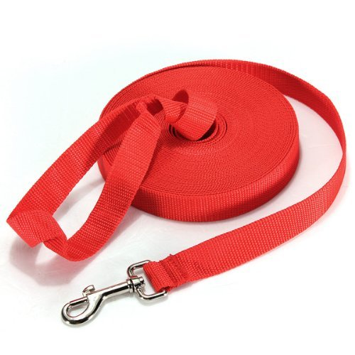 40FT/50FT/66FT Extra Long Puppy Pet Training Obedience Retractable Lead Leash Recall 3 Color Choice (50Ft, Red)