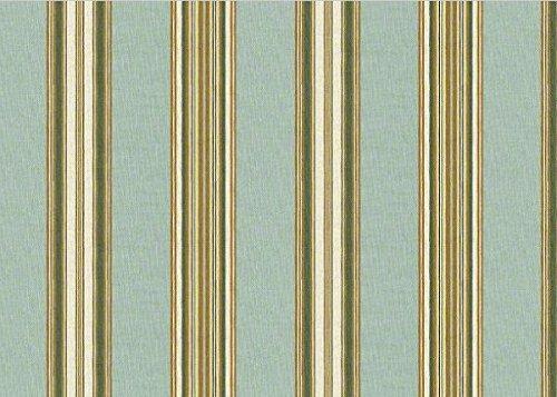 Robert Allen Ren Stripe RR Dew RA-246216