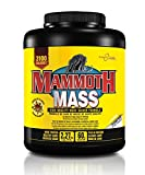 Mammoth Mass, Chocolate 5lb