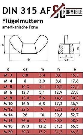 Edelstahl A2 - Vollgewinde - M6x100 - 10 St/ück - SC603//SC315 kantige Form DIN 603//DIN 315 V2A Flachrundschrauben//Schlossschrauben mit Fl/ügelmuttern