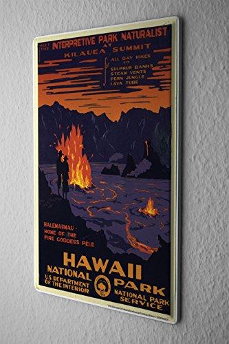 Tin Sign Globetrotter National Park Hawaii Metal Plate 8X12