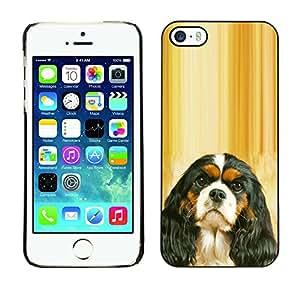 Vortex Accessory Carcasa Protectora Para APPLE iPHONE 5 / 5S - Cavalier King Charles Spaniel Puppy -