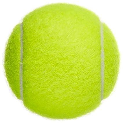 Westeng Pelotas Tenis Niño Profesional Mascota Perros Alta Elasticidad Dog Ball Tennis,1Pcs