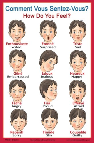 French Language School Poster: French Words About Feelings with English Translation - Classroom Chart