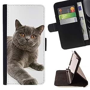 Momo Phone Case / Flip Funda de Cuero Case Cover - Chartreux British Shorthair gato siberiano; - HTC One Mini 2 M8 MINI