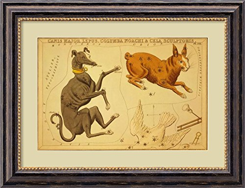 Canis Major, Lepus, Columba Noachi & Cela Sculptoris, 1825 by Jehoshaphat Aspin