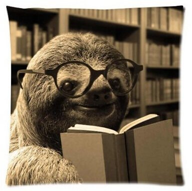 Vintastore Funny Sloth Reading Books Home Decorative Throw Pillow Covers Zippered Square Twin Sides Printing Pillowslip Pillow Protector -