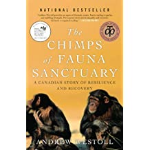 Chimps Of Fauna Sanctuary: A Canadian Story of Resilience and Recovery