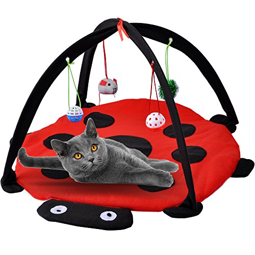 MyfatBOSS Cat Play Mat, Cat Tent Activity Center with Hang Cat Toys, Outdoor Bed Play Tent for Cat