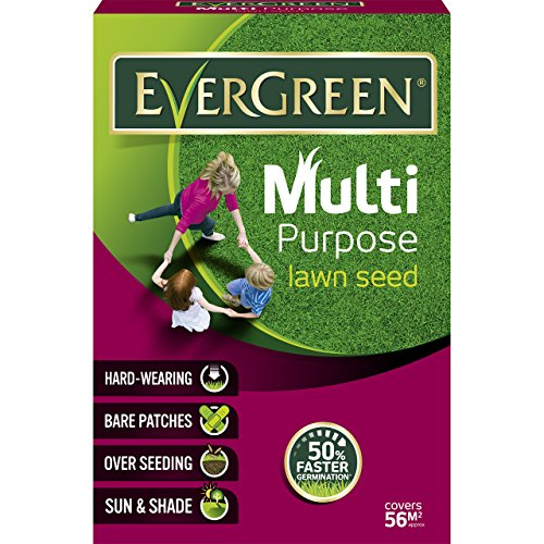 EverGreen Multi Purpose Grass Seed Carton, 1.6 kg