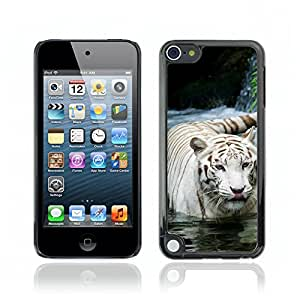 Super Stellar Slim PC Hard Case Cover Skin Armor Shell Portection // V0000772 Tiger Animal Pattern // Apple Ipod Touch 5 5G 5th