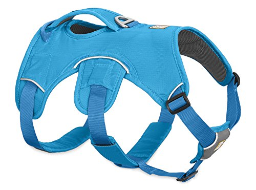 RUFFWEAR - Web Master Dog Harness with Lift Handle, Blue Dusk (2017), Small