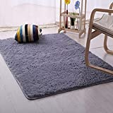 DODOING 3-5 Days Delivery Gray Super Soft Indoor Modern Long Area Rugs Fluffy Living Room Carpets Suitable for Children Bedroom Decor Nursery Rugs,120cmx160cm(47.2x62.9 inch)