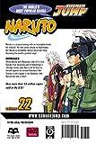 Naruto, Vol. 22: Comrades