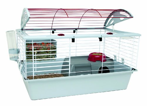 Living World Deluxe Habitat, Standard