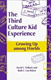 img - for The Third Culture Kid Experience: Growing Up Among Worlds by David C. Pollock (1999-06-03) book / textbook / text book