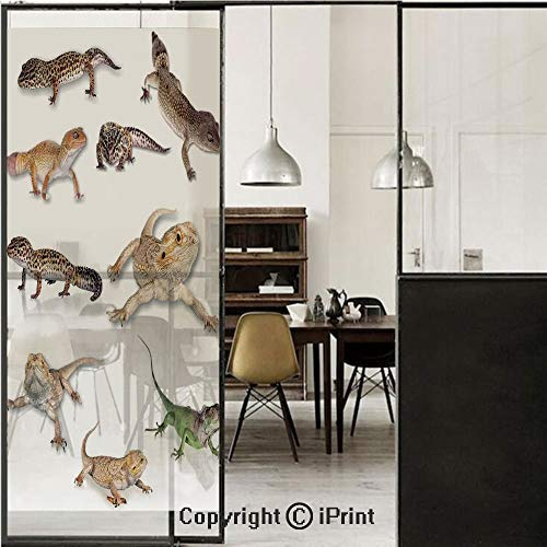 Reptiles 3D Decorative Film Privacy Window Film No Glue,Frosted Film Decorative,Multi Colored Staring Leopard Gecko Family Image Primitive Reptiles Wildlife Art Print Home,for Home&Office,17.7x59Inch