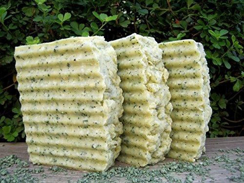 - Kelp and Sea Salt Soap Scrub, Hot Process Soap, Seaweed Soap, Exfoliating Soap, All Natural, Detox Soap, Antiseptic Soap, Anti Cellulite