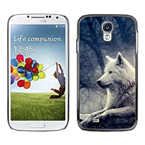 TECHCASE**Cubierta de la caja de protección la piel dura para el ** Samsung Galaxy S4 I9500 ** Wolf White Bright Magical Forest Night Tree