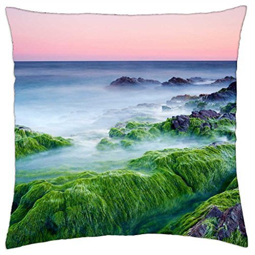 (misty sea over moss covered rocks on shore - Throw Pillow Cover Case (18)