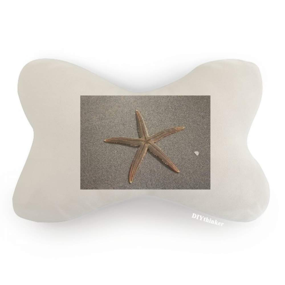 DIYthinker Grey Wall Starfish Science Nature Picture Car Neck Pillow Headrest Support Cushion Pad