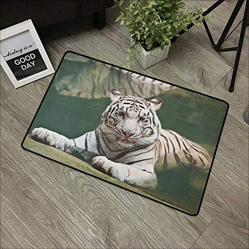Floor mat W16 x L24 INCH Tiger,Bengal Symbol Swimming White Beast with Black Sprites Large Cat Animals Having Fun, Teal White Non-Slip Door Mat Carpet]()