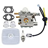 Panari Carburetor + Air Filter Fuel Line for ECHO Pole Saw Pruner PP1250 PP1260 PP1400 PPFD2400 PPSR2433 PPT2400 TT24 TT24A