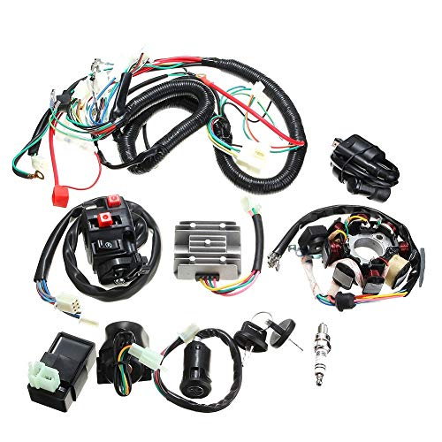 znwiem Complete Electric Stator Wiring Harness Wire Loom for Pit Bike Scooter ATV Quad 125 150 200 250cc Stator CDI Coil: Amazon.co.uk: Sports & Outdoors